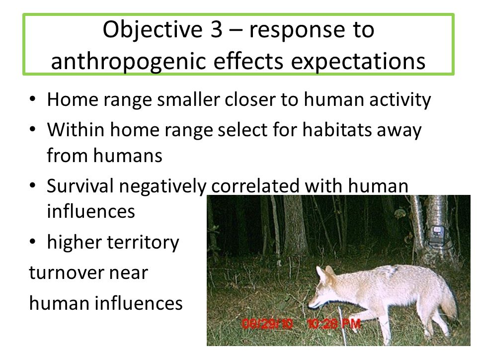 Objective 3 – response to anthropogenic effects expectations