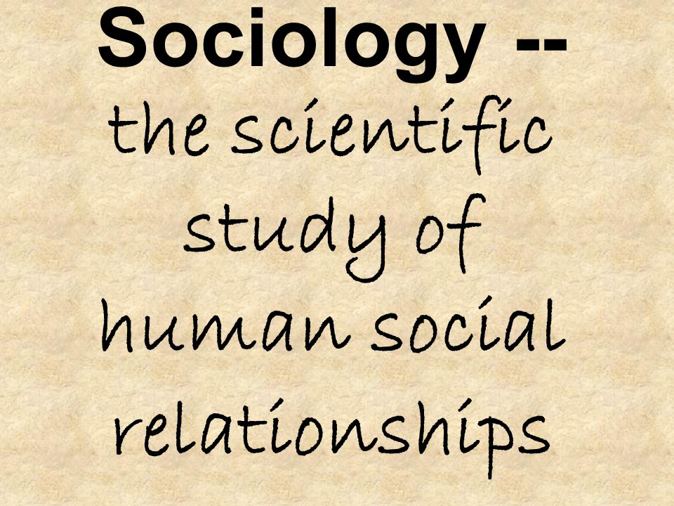 sociology of education studying the relationship The study is located in the area of educational transition and selection and is   field of sociology, with transversal relations with related disciplines: sociology of.