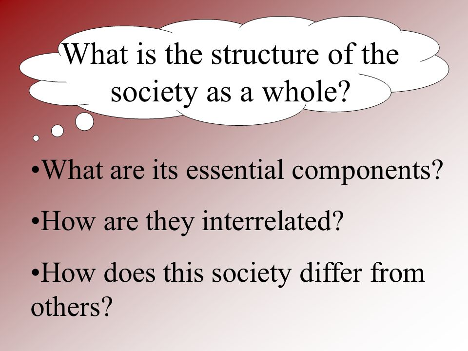 What is the structure of the society as a whole