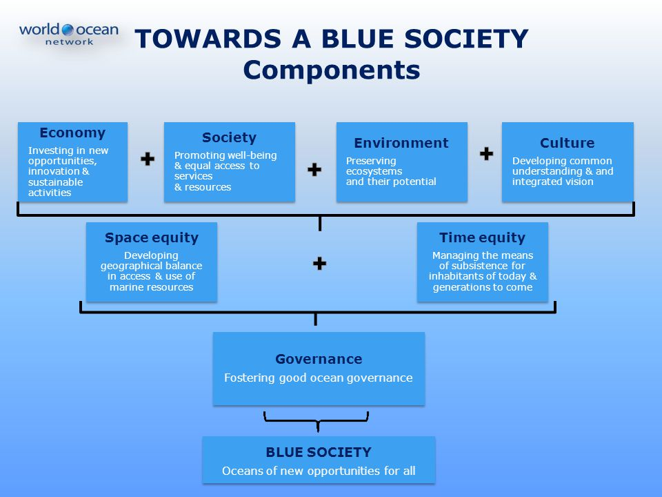 TOWARDS A BLUE SOCIETY Components