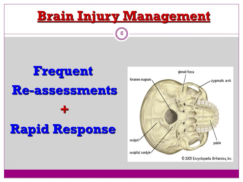 Brain Injury Management