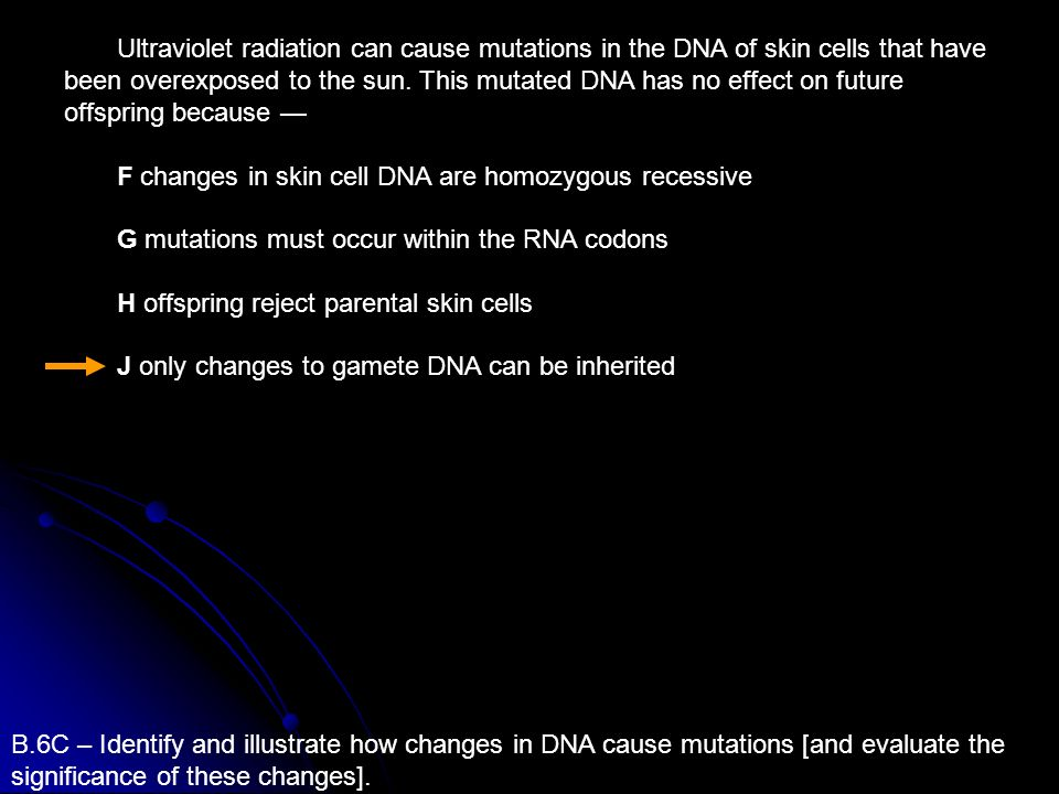 Ultraviolet radiation can cause mutations in the DNA of skin cells that have been overexposed to the sun. This mutated DNA has no effect on future offspring because —