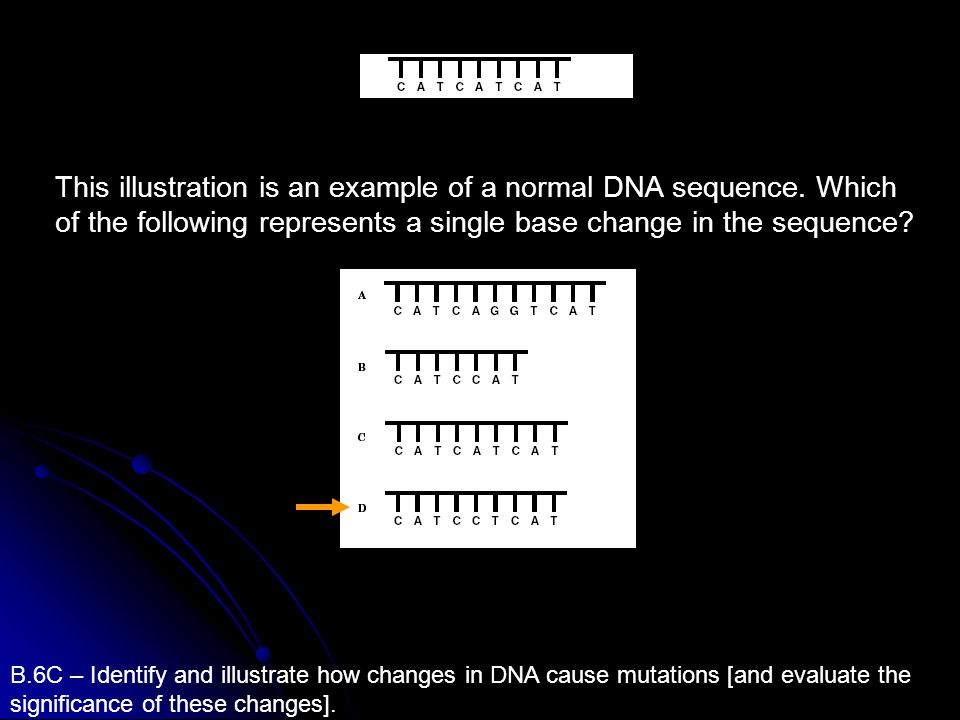 This illustration is an example of a normal DNA sequence
