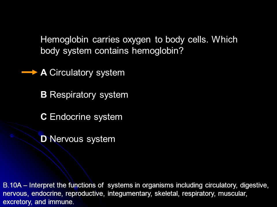 Hemoglobin carries oxygen to body cells