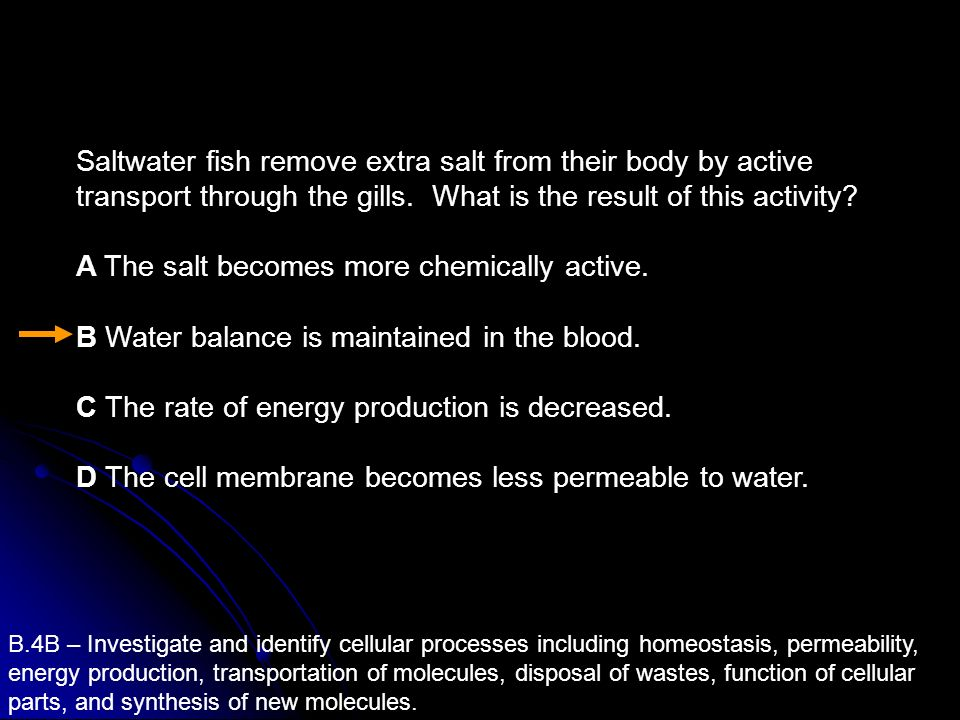 A The salt becomes more chemically active.