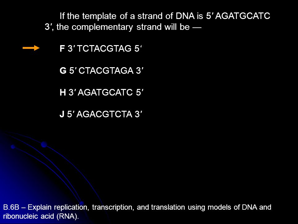 If the template of a strand of DNA is 5 AGATGCATC 3 , the complementary strand will be —