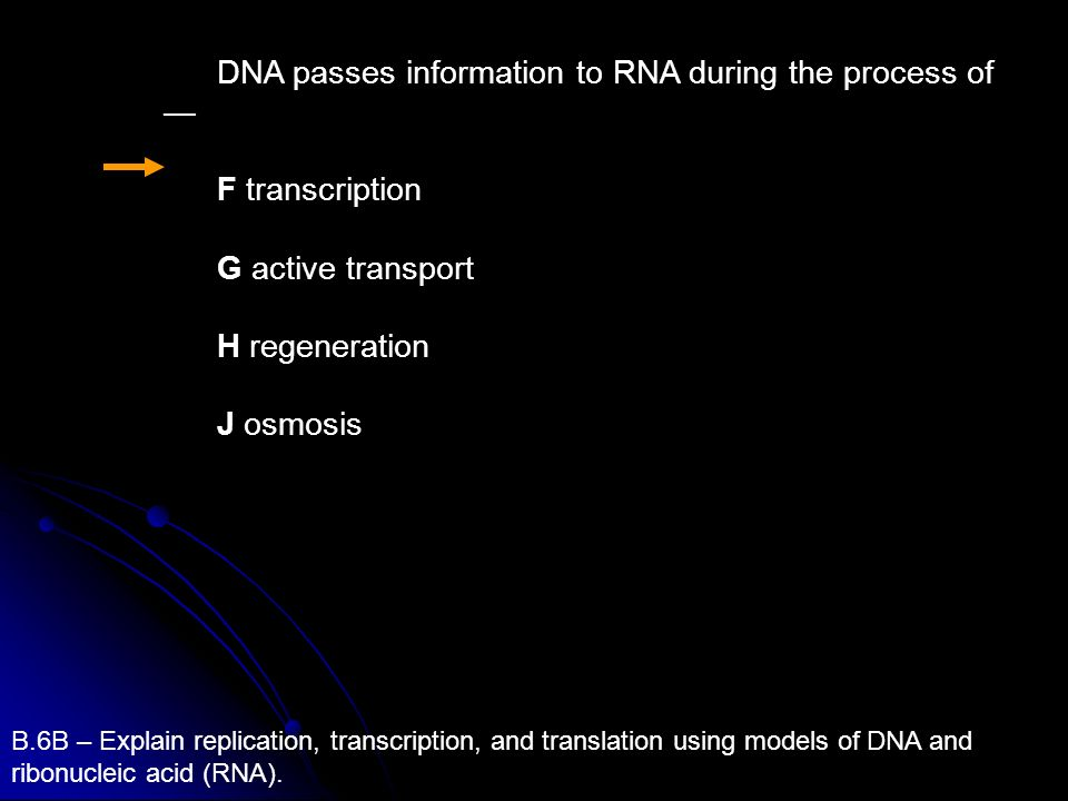 DNA passes information to RNA during the process of —