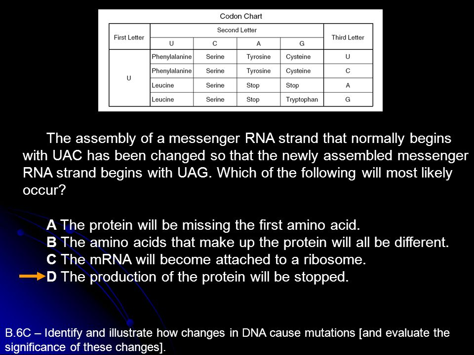 A The protein will be missing the first amino acid.