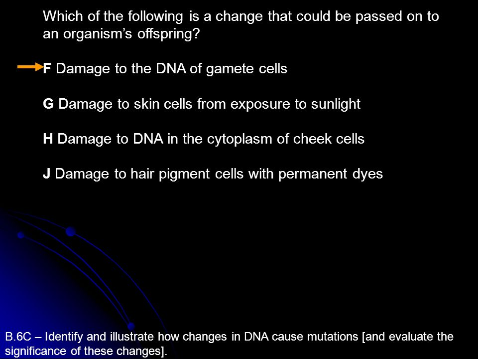 F Damage to the DNA of gamete cells