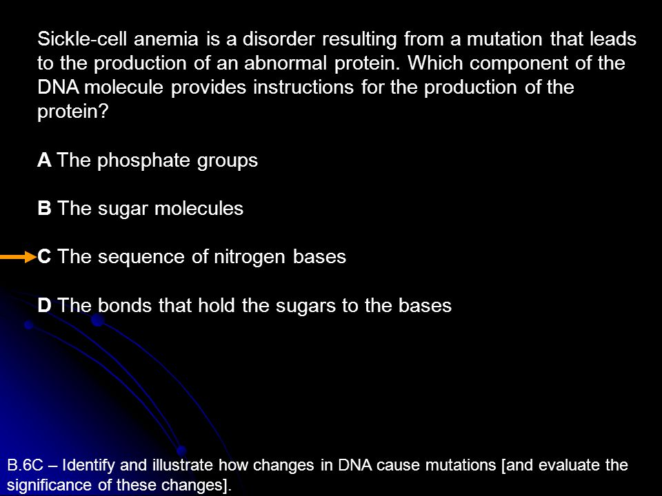 C The sequence of nitrogen bases