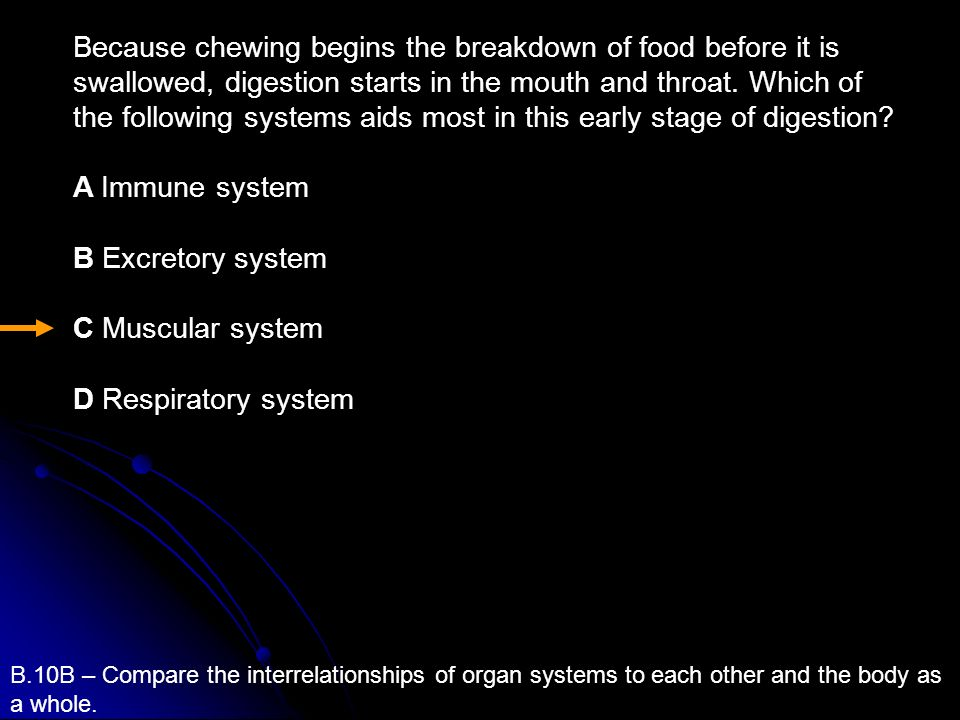 Because chewing begins the breakdown of food before it is swallowed, digestion starts in the mouth and throat. Which of the following systems aids most in this early stage of digestion