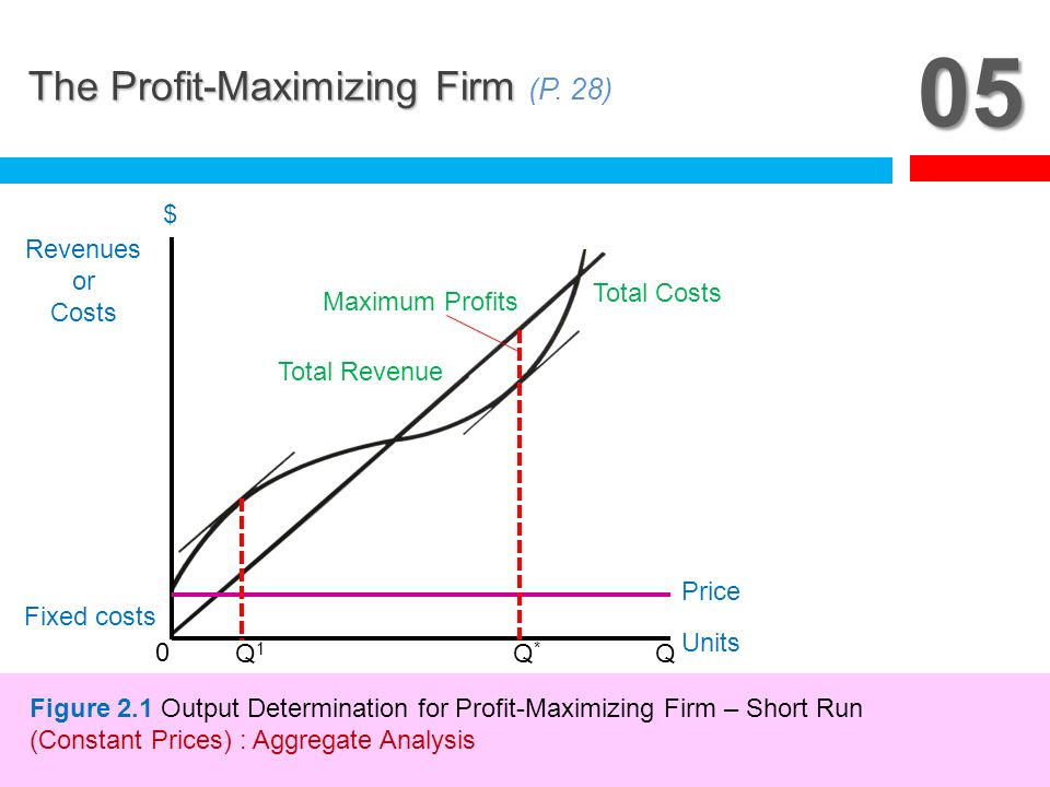 05 The Profit-Maximizing Firm (P. 28) Q1 Q* Q Fixed costs Revenues or