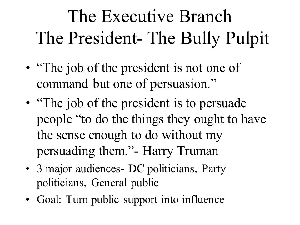 The Executive Branch The President- The Bully Pulpit