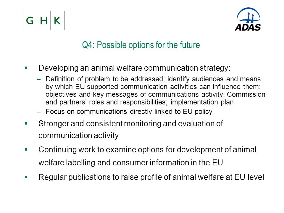 Q4: Possible options for the future