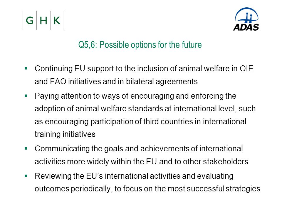 Q5,6: Possible options for the future