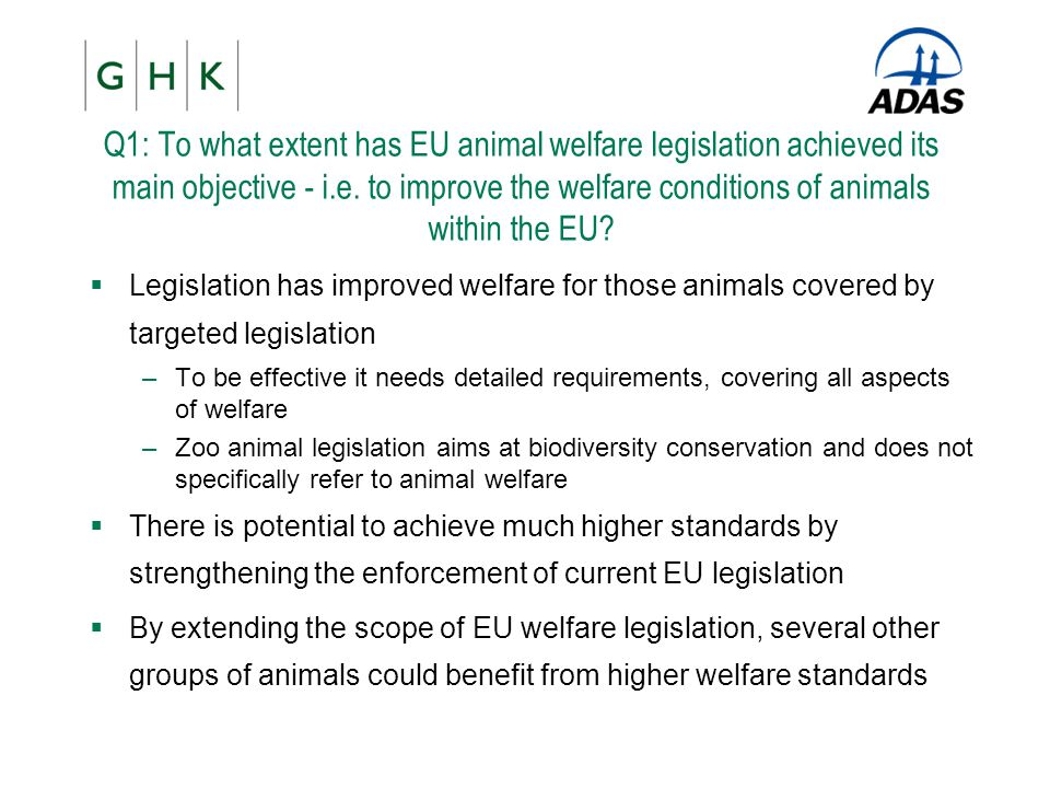 Q1: To what extent has EU animal welfare legislation achieved its main objective - i.e. to improve the welfare conditions of animals within the EU
