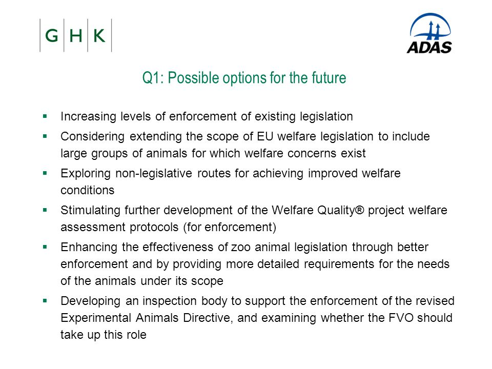 Q1: Possible options for the future