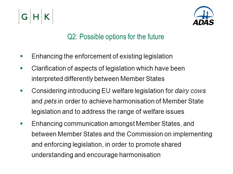 Q2: Possible options for the future