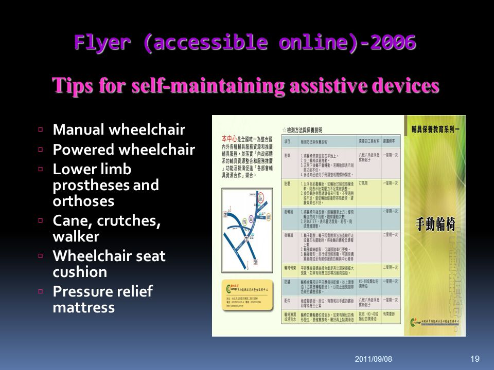 Flyer (accessible online)-2006