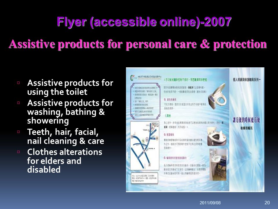 Flyer (accessible online)-2007