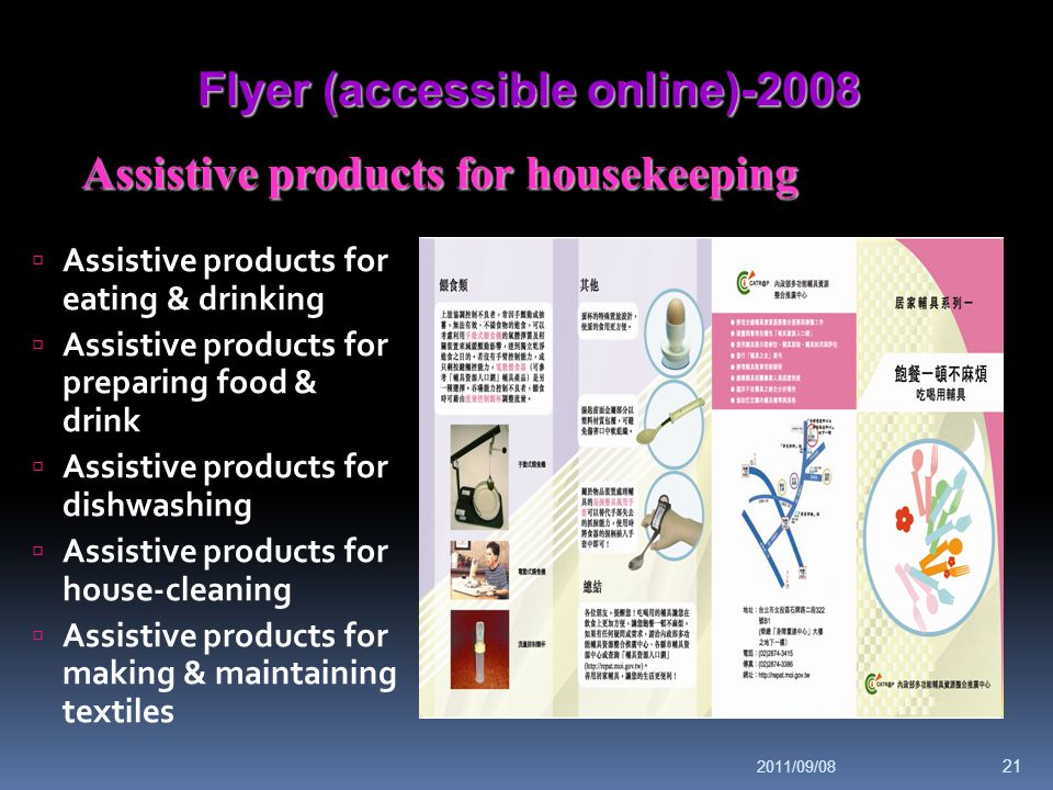 Flyer (accessible online)-2008