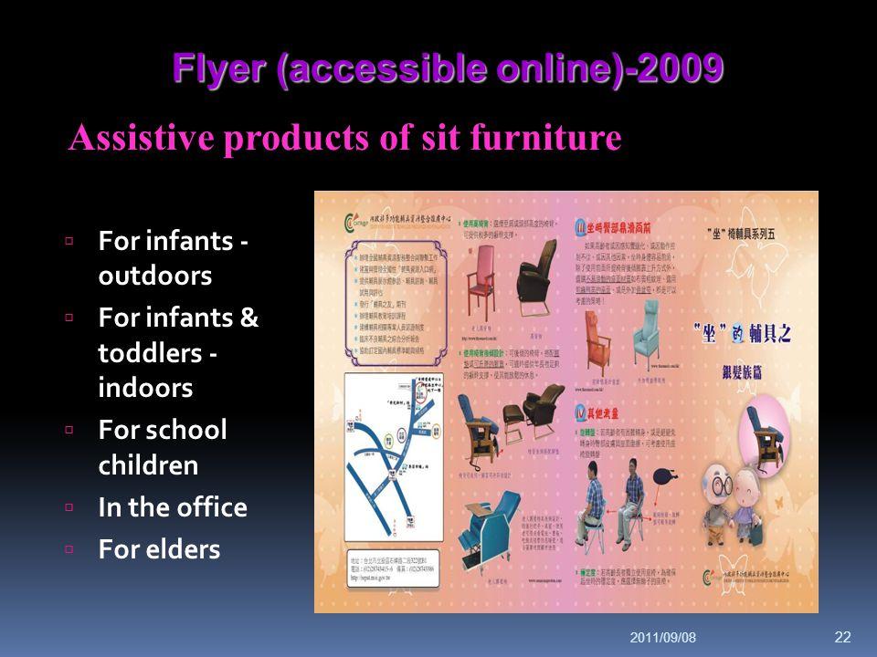 Flyer (accessible online)-2009