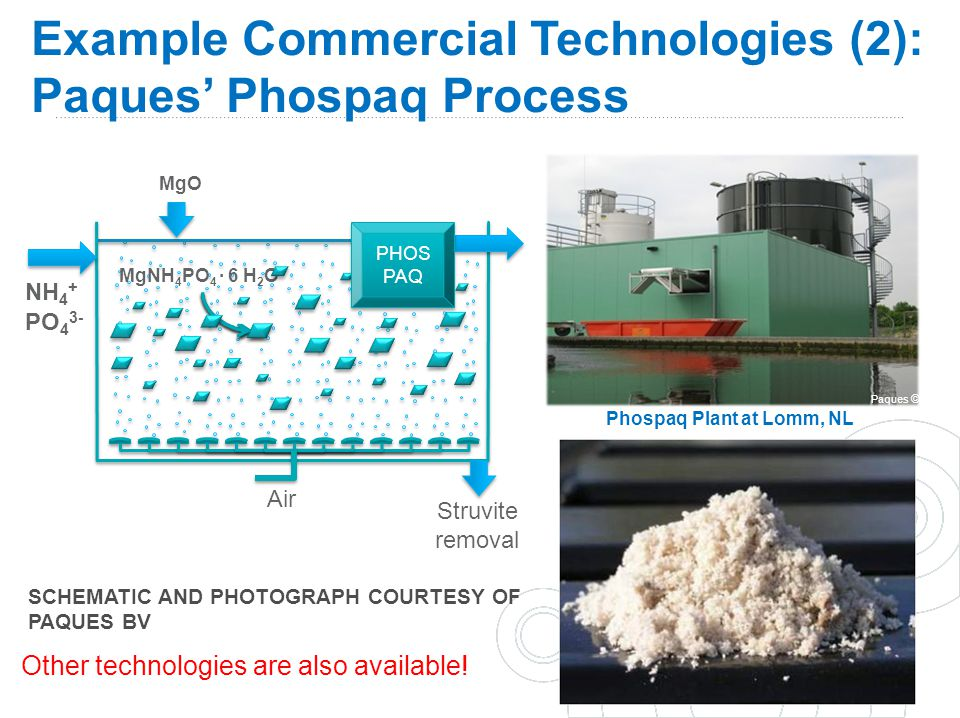 Example Commercial Technologies (2): Paques' Phospaq Process