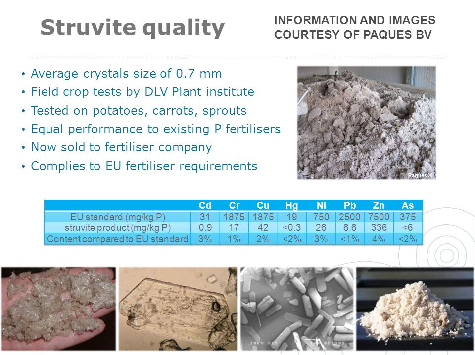 Struvite quality Information and Images courtesy of Paques BV
