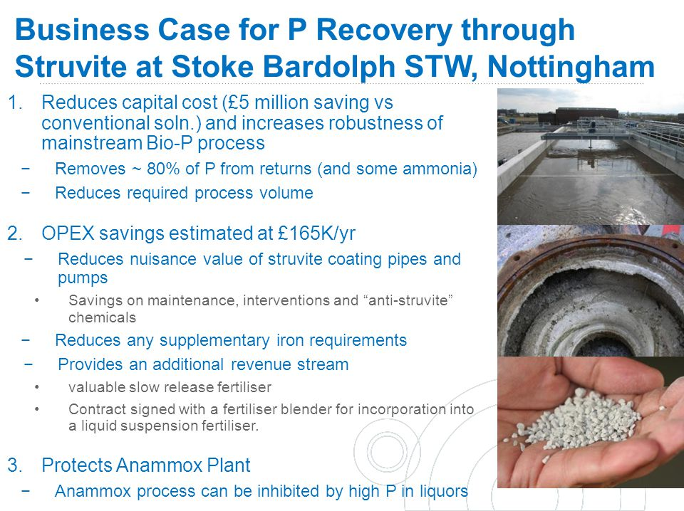 Business Case for P Recovery through Struvite at Stoke Bardolph STW, Nottingham