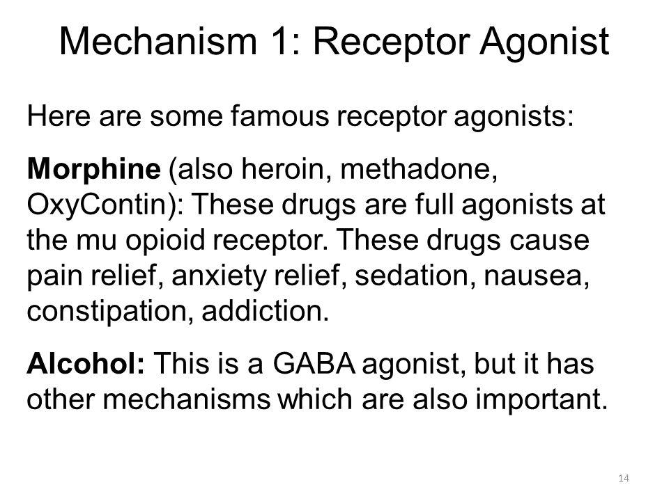 Mechanism 1: Receptor Agonist