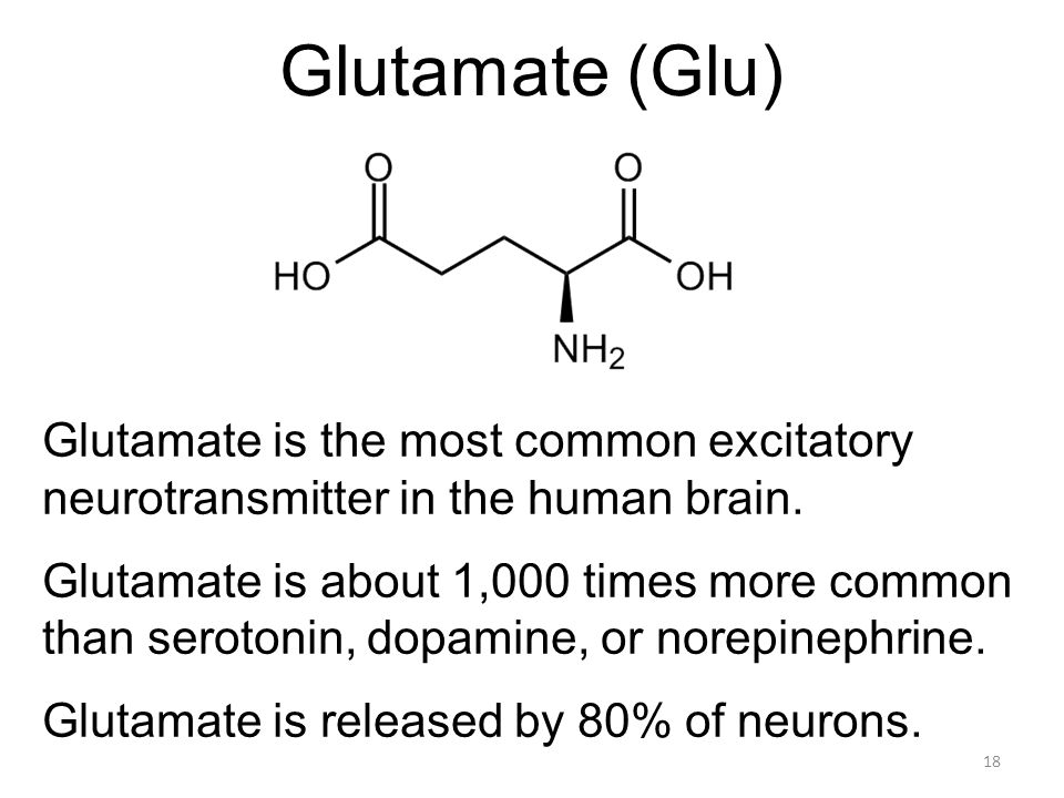 Glutamate (Glu) Glutamate is the most common excitatory neurotransmitter in the human brain.
