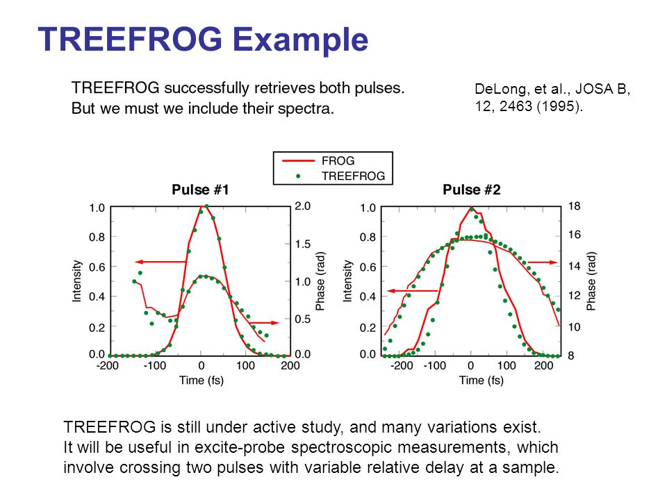 TREEFROG Example DeLong, et al., JOSA B, 12, 2463 (1995). TREEFROG is still under active study, and many variations exist.