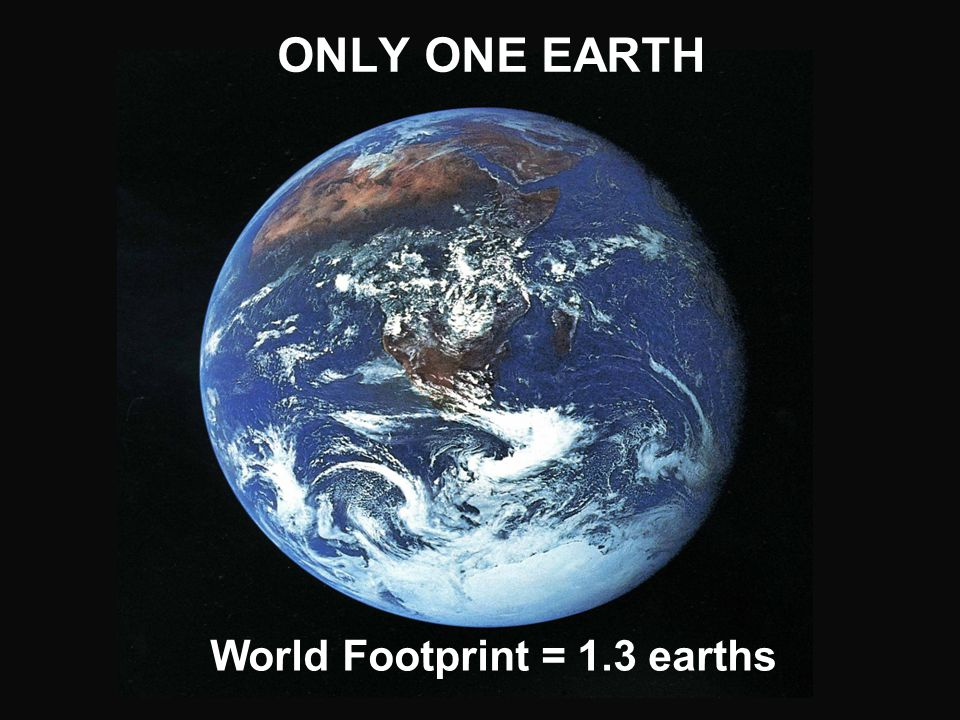 World Footprint = 1.3 earths