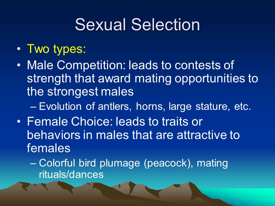 Sexual Selection Two types: