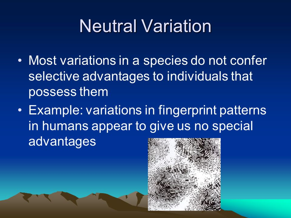Neutral Variation Most variations in a species do not confer selective advantages to individuals that possess them.