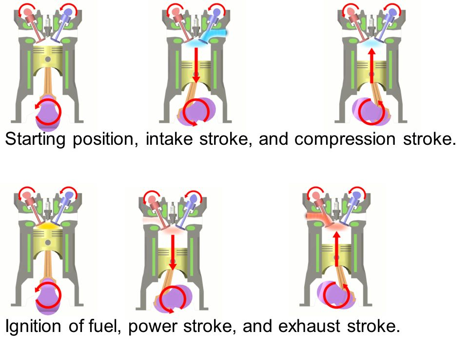 Starting position, intake stroke, and compression stroke.