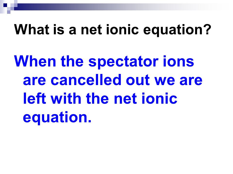 What is a net ionic equation