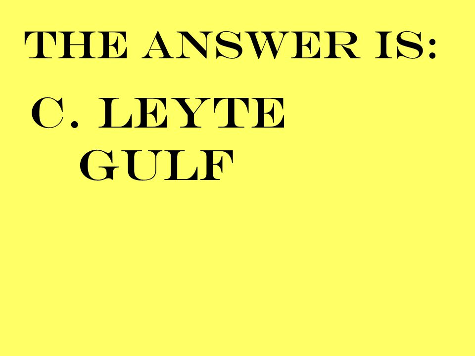 THE ANSWER IS: C. LEYTE GULF