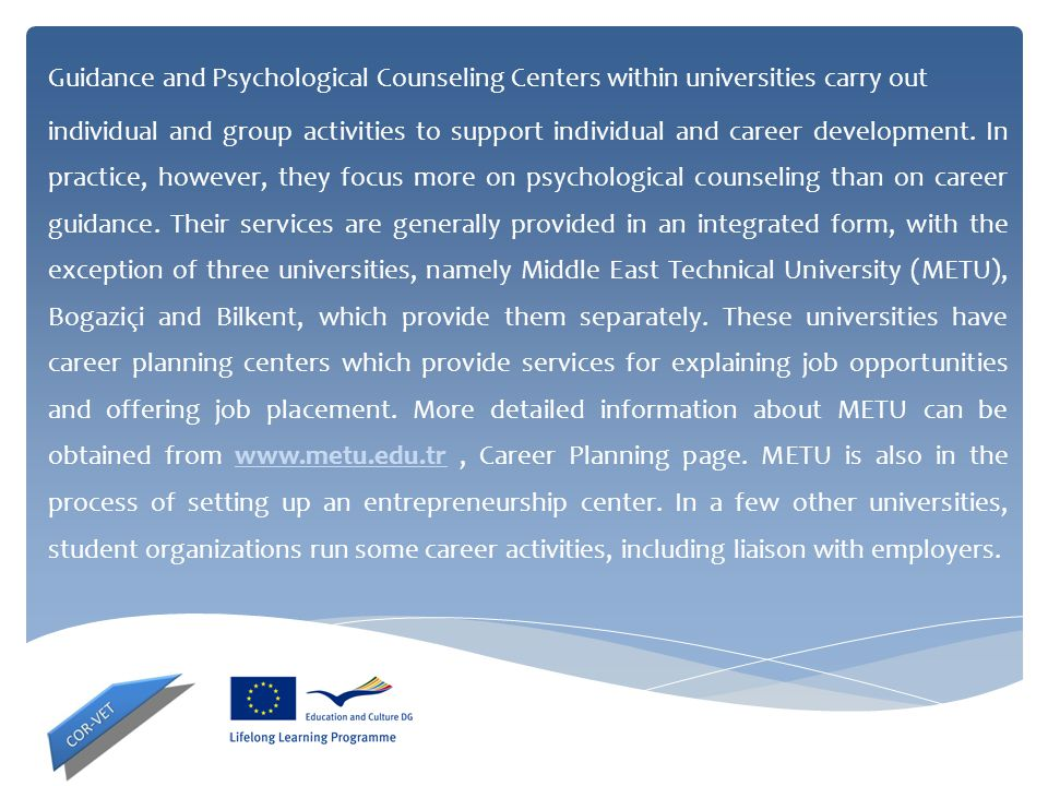Guidance and Psychological Counseling Centers within universities carry out