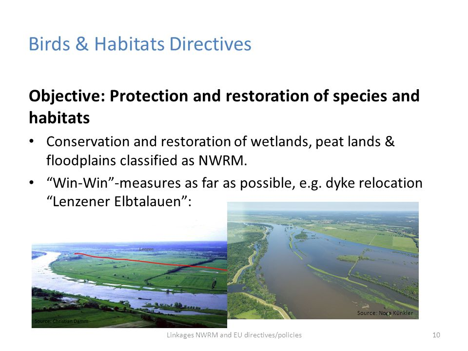 Birds & Habitats Directives