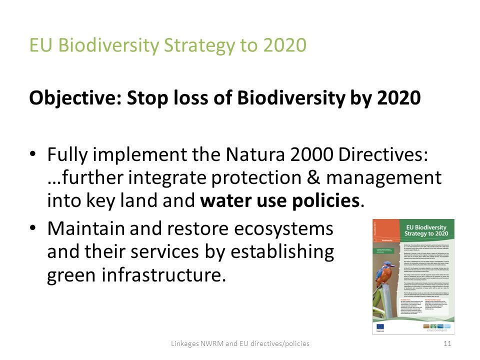 EU Biodiversity Strategy to 2020