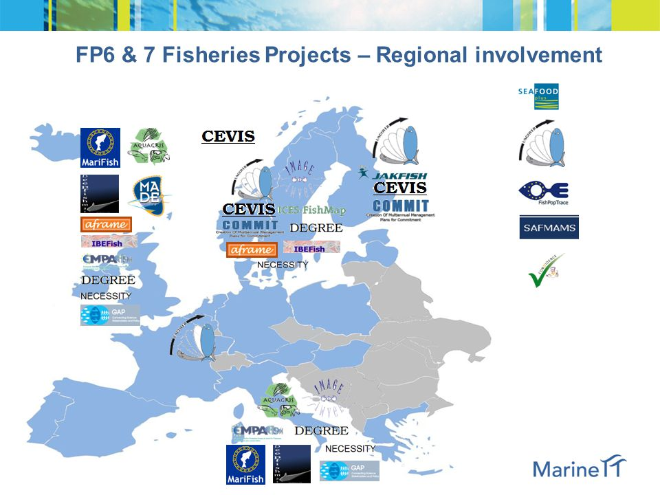 FP6 & 7 Fisheries Projects – Research topics by area of investigation
