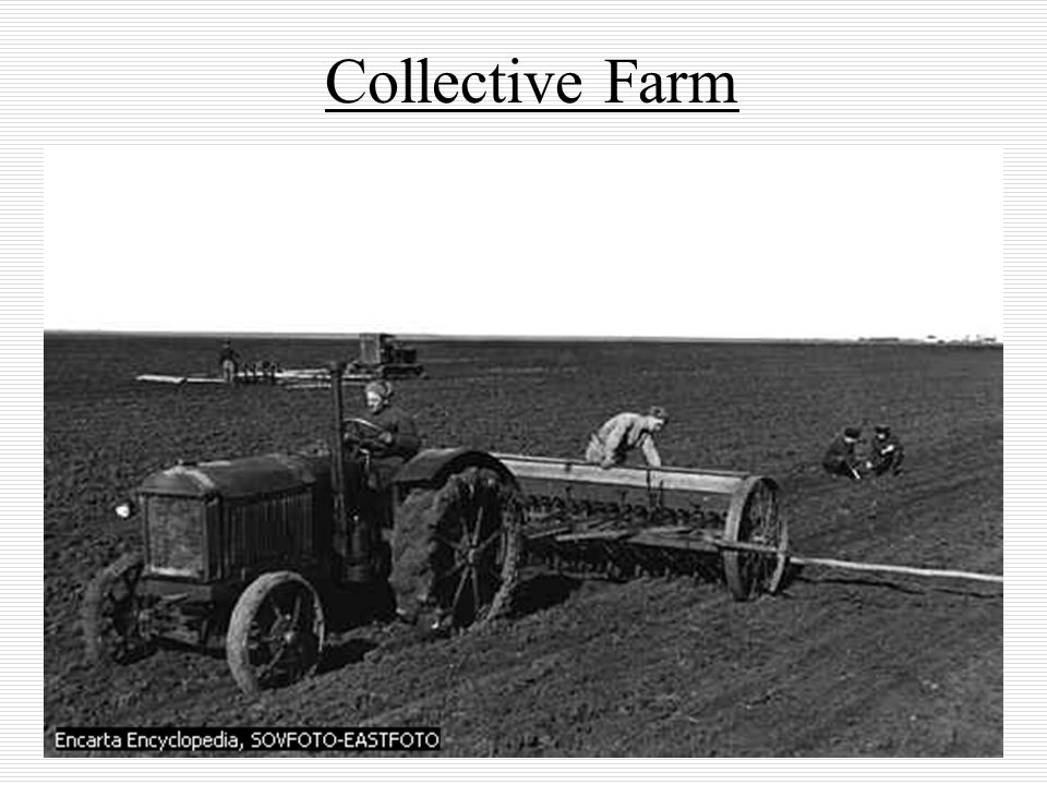 Collective Farm