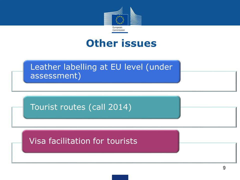 Other issues Leather labelling at EU level (under assessment)