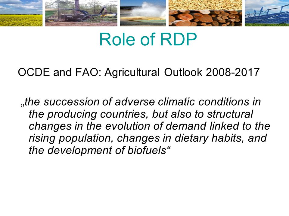 Role of RDP OCDE and FAO: Agricultural Outlook