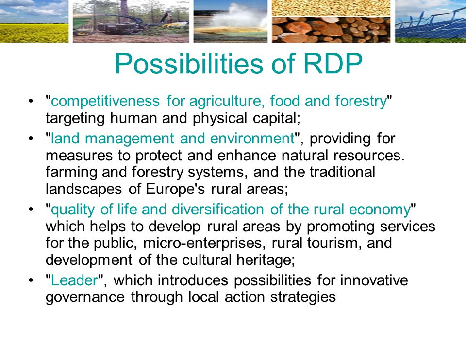 Possibilities of RDP competitiveness for agriculture, food and forestry targeting human and physical capital;