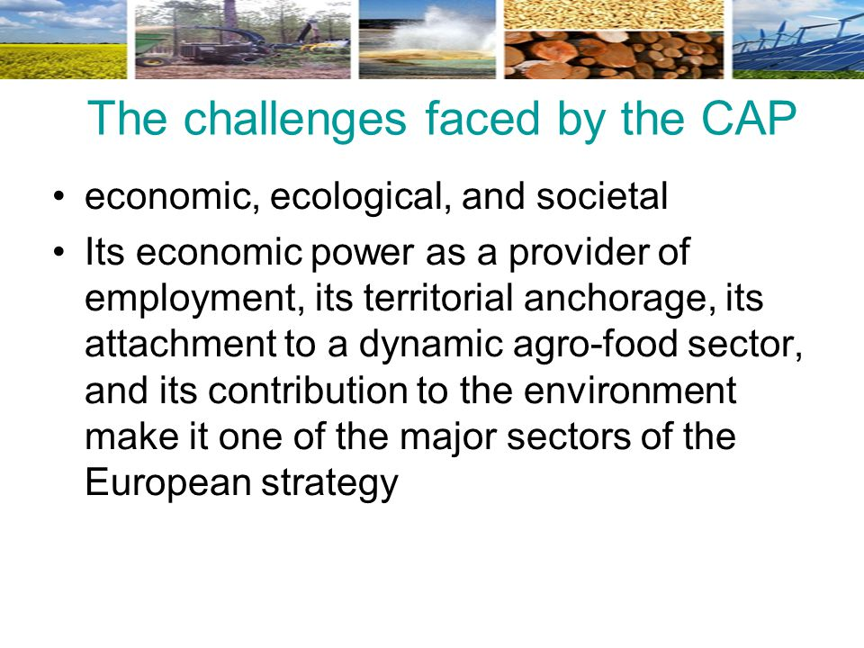 The challenges faced by the CAP