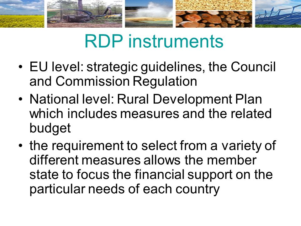 RDP instruments EU level: strategic guidelines, the Council and Commission Regulation.