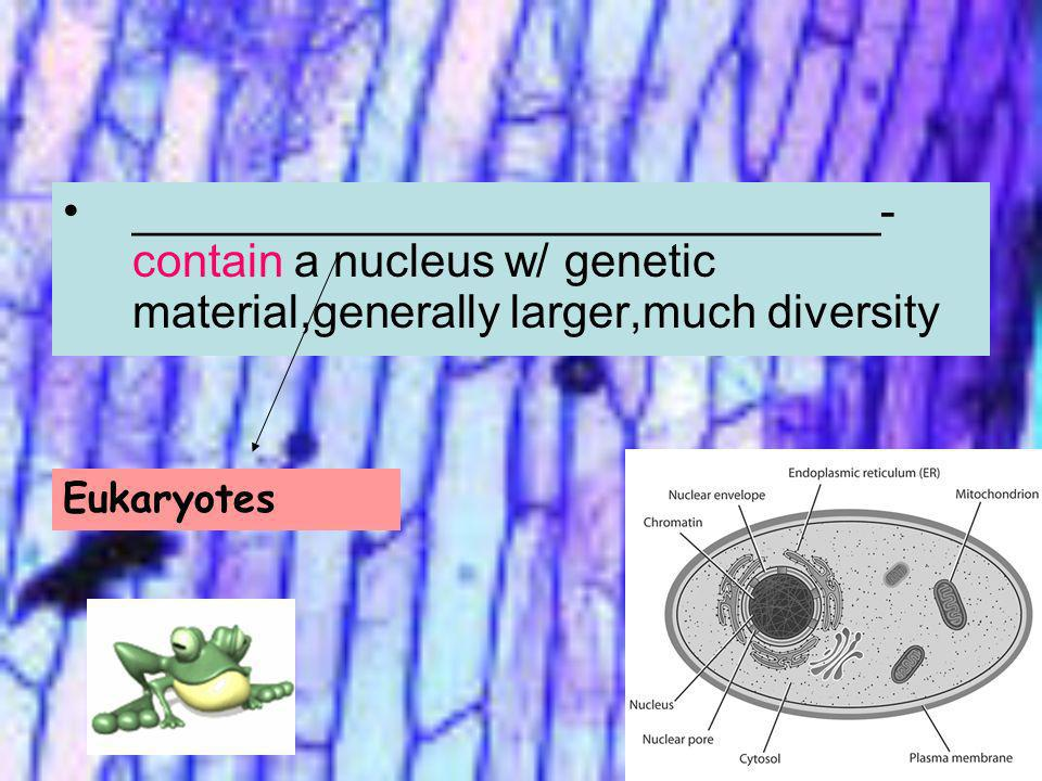 _____________________________-contain a nucleus w/ genetic material,generally larger,much diversity