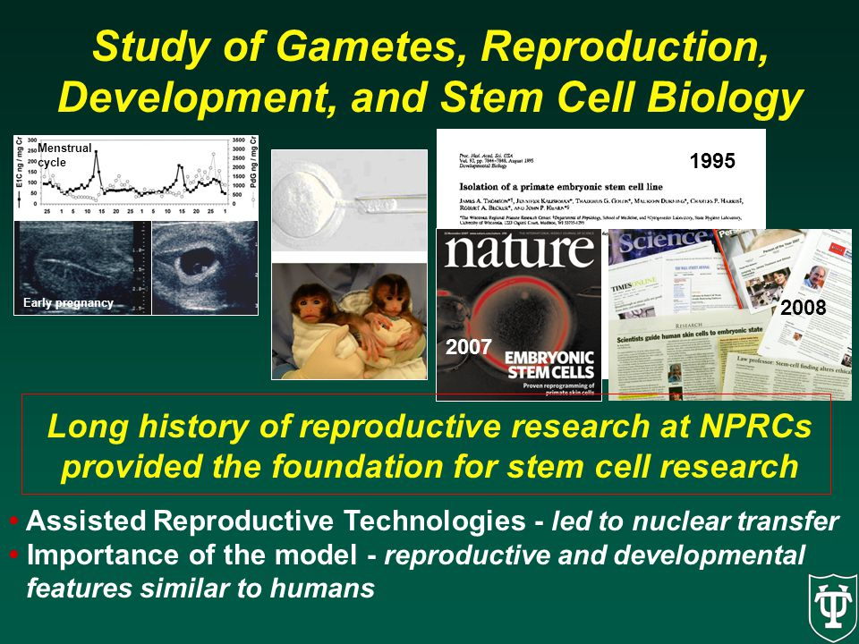 Study of Gametes, Reproduction, Development, and Stem Cell Biology